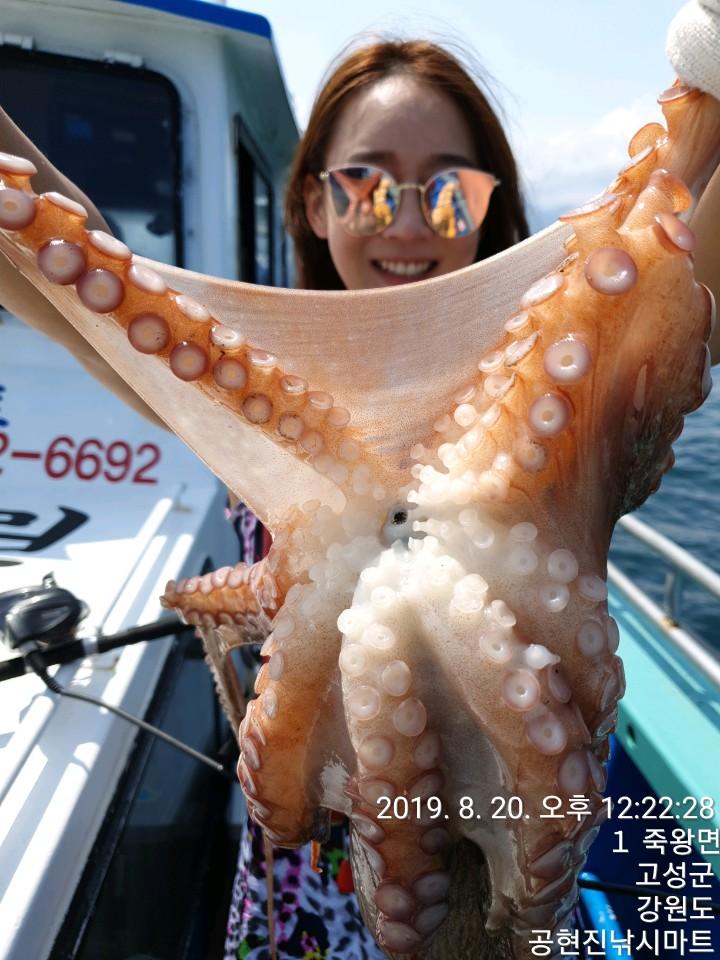 22인승 돌핀2호 / 대왕문어 조황입니다.
