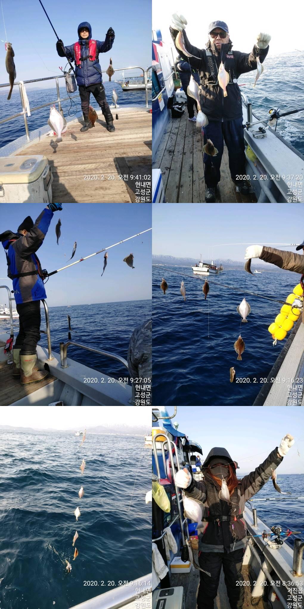 어제(20/목) 22인승 돌핀호 어구가자미 초~대박~ 조황입니다.