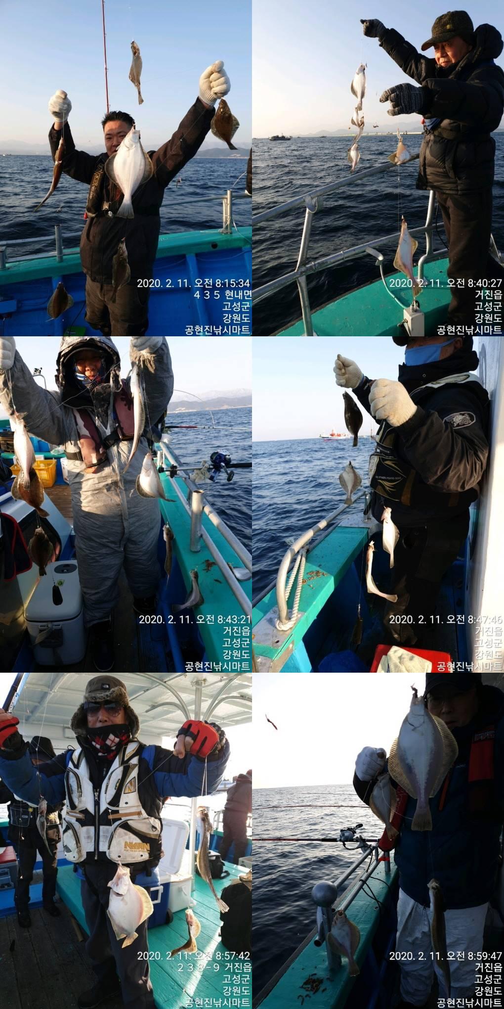 어제(11일) 22인승 돌핀마린호 / 어구가자미 조황입니다.