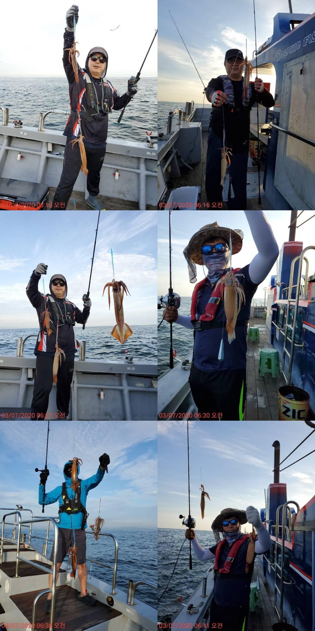 22인승 돌핀호 / 화살촉 오징어 조황입니다~