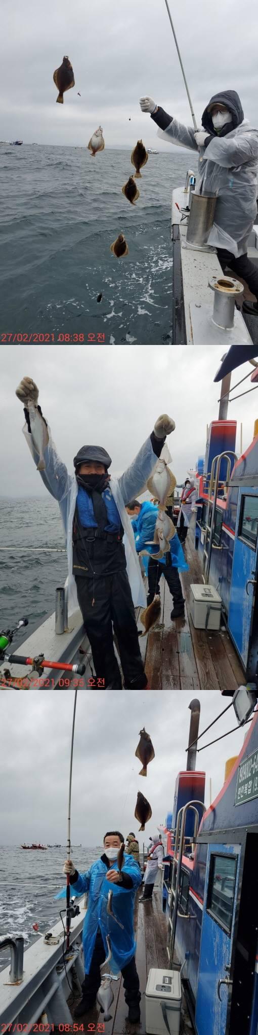 22인승 돌핀호 / 어구가자미 조황입니다.