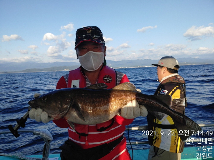 22인승 돌핀마린호 / 대구 낚시 조황입니다.